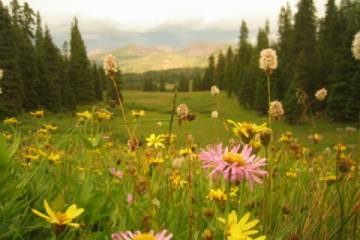 Vail, Colorado in the Springtime image