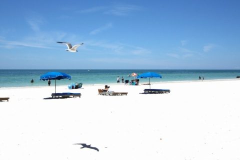 John's Pass Village with Activities like Dolphin Watch, Parasail, Deep Sea Fishing, Jet Ski Rentals, & Casino Boat